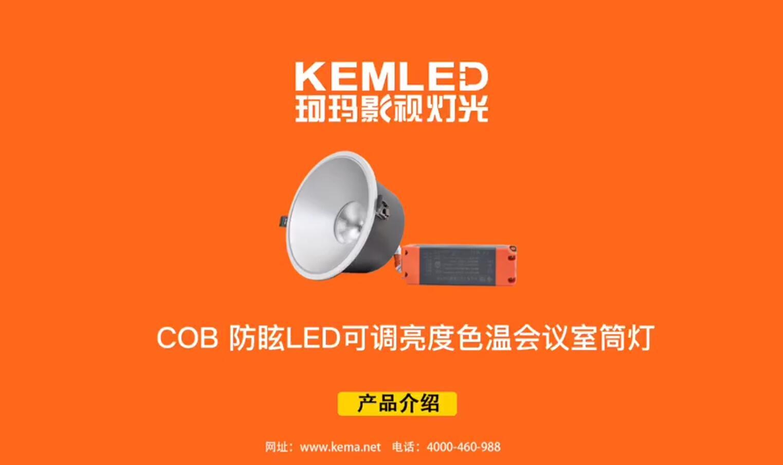 KM-H4 LED嵌入式可调光象鼻灯