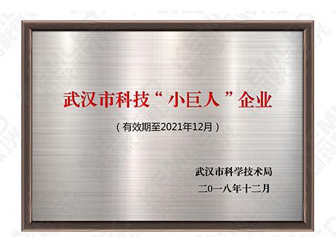 """珂玛-武汉市科技""""小巨人""""企业"""